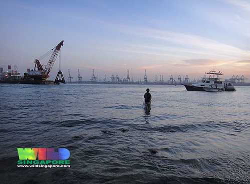 Dredging next to Cyrene Reef near our usual landing spot