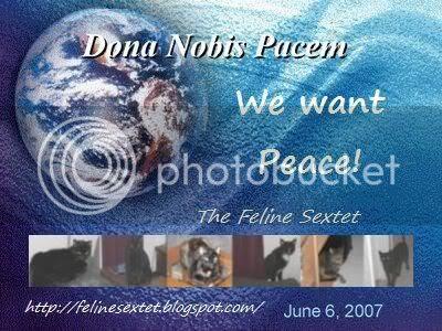Our Peace Globe