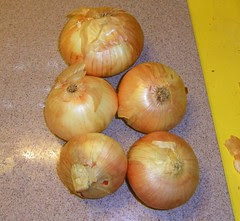 onions5lbfree