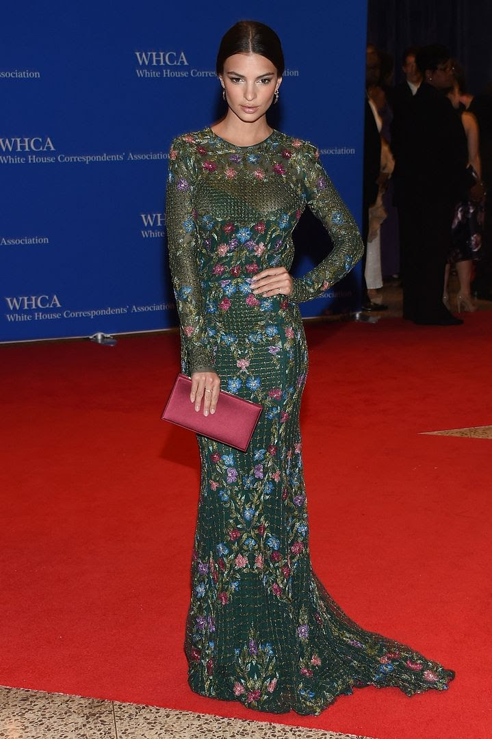 photo 102nd-white-house-correspondents-association-dinner-arrivals-1_zps4cskr8qj.jpg