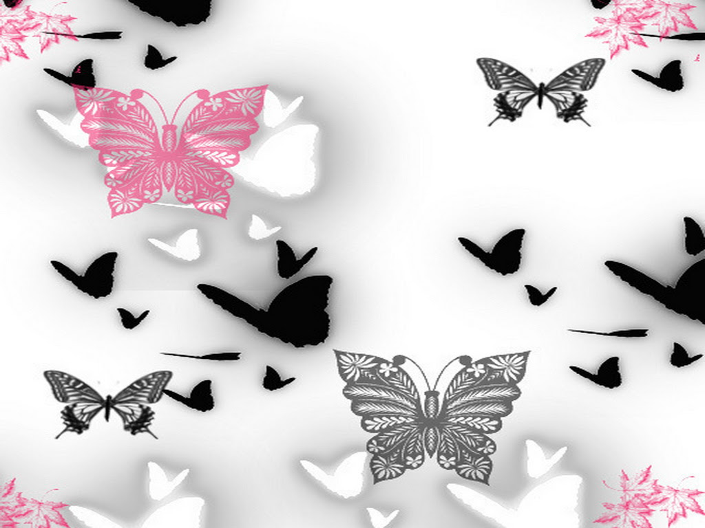 Pink and Black Butterfly Wallpaper - WallpaperSafari