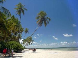praia-de-pipa1