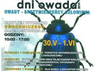 Dni Owada w Krakowie