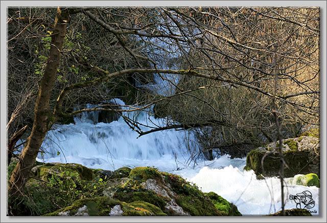 4 Nacimiento del río Cadagua