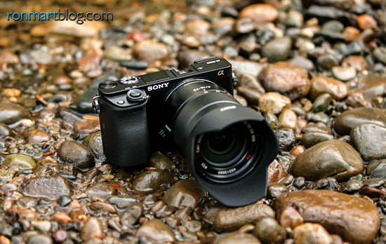 Sony Alpha a6000 with 16-70mm f/4 ZA OSS Lens - Copyright Ron Martinsen - ALL RIGHTS RESERVED