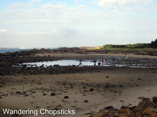 6 Searching for Tide Pools 7
