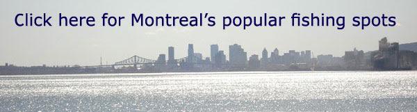Montreal's best shore fishing spots