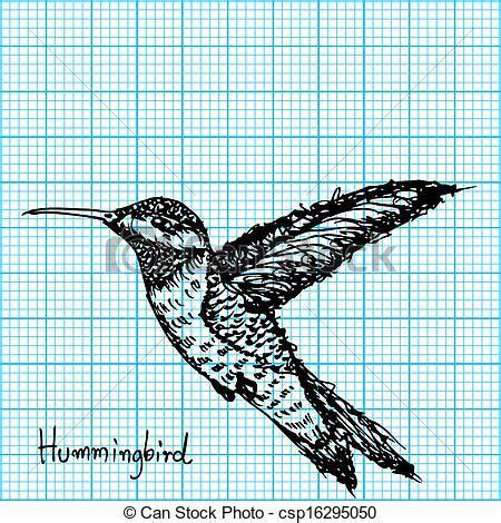 hummingbird sketch  graph paper image  hummingbird