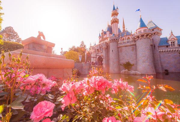 1-Day Disneyland Ideal Day Plan - Disney Tourist Blog