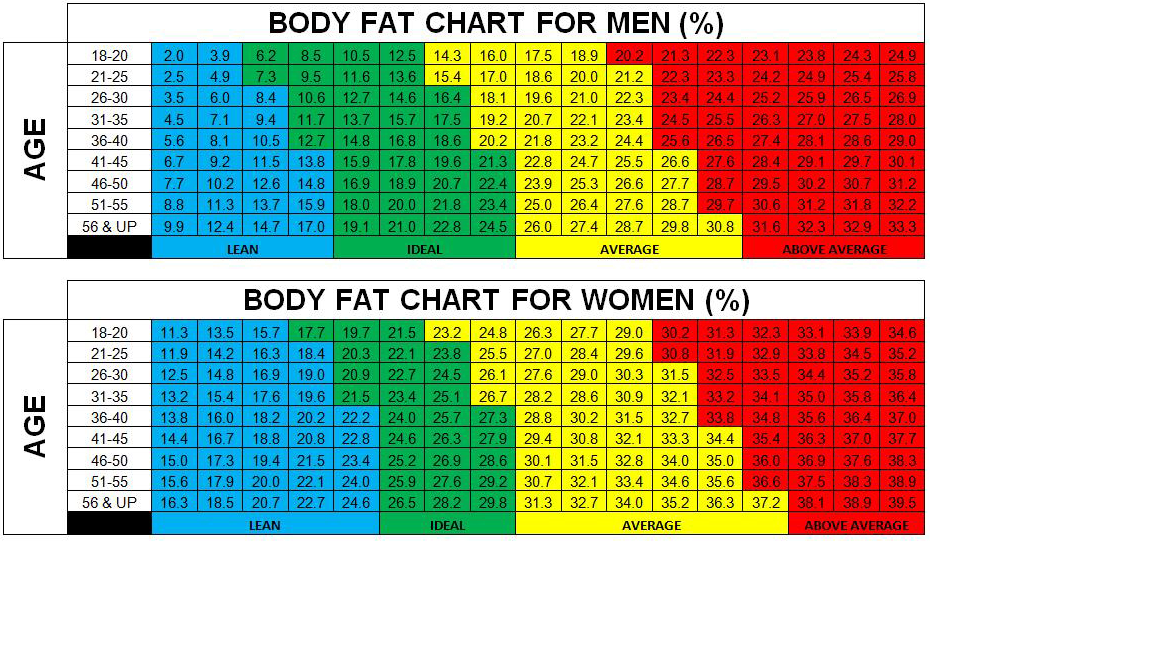 body fat percentage bioelectrical impedance