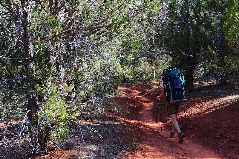 IMG_5774 Kolob Arch/La Verkin Trail, Zion National Park