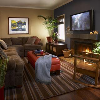 Living Room contemporary family room