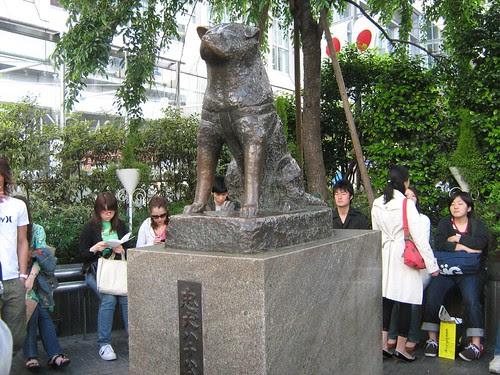 Hachiko Bronze Statue 1