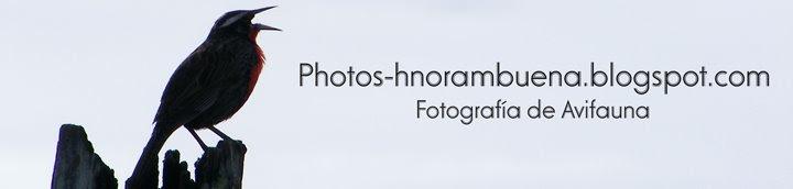 photos-hnorambuena.blogspot.com