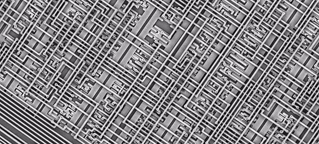 Esta es la mejor forma de entender el diminuto tamaño de un microchip