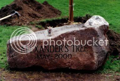 Alexander's Rock