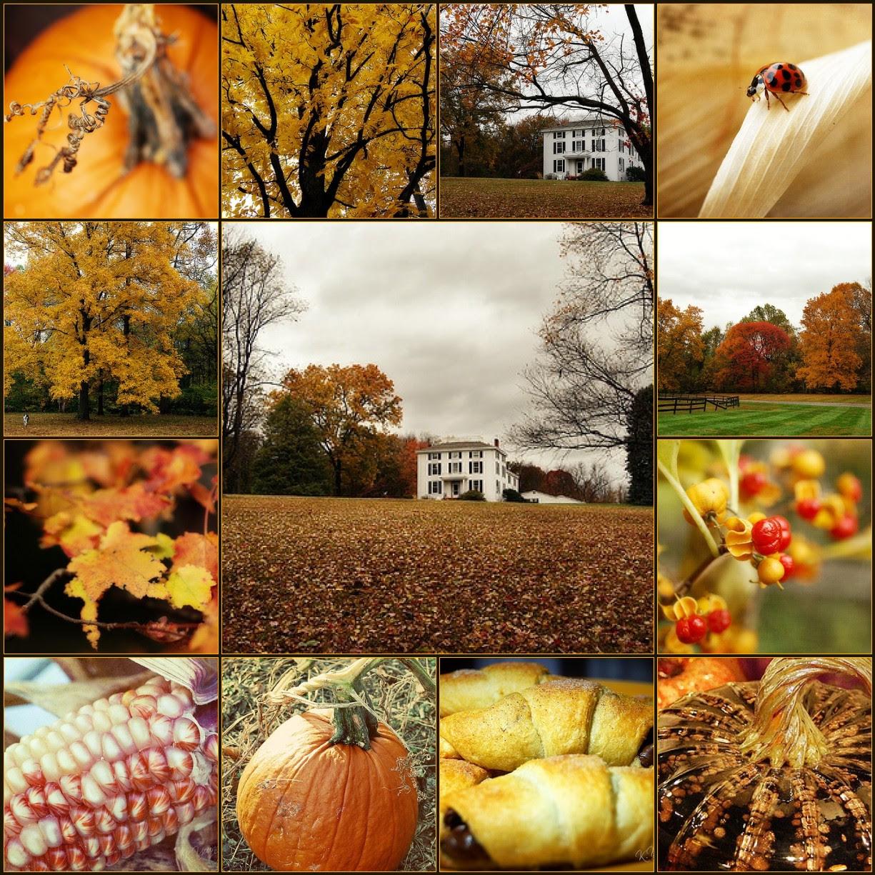 Mosaic: Autumn hues