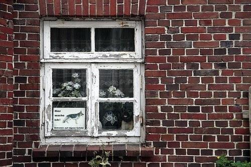 Fenster Preise: Langeoog_MG_6646_MP