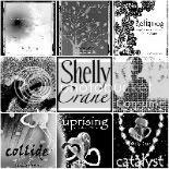 Shelly Crane Speaks