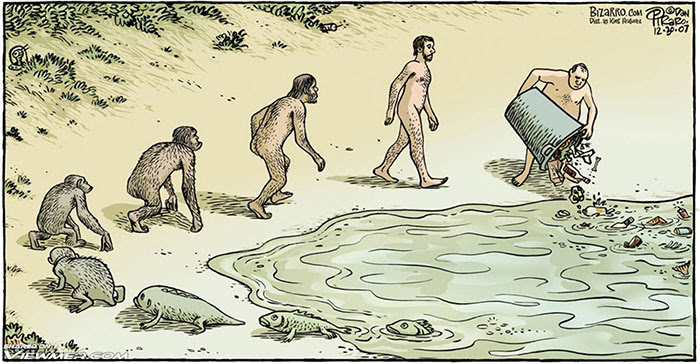 Evolution In A Nutshell