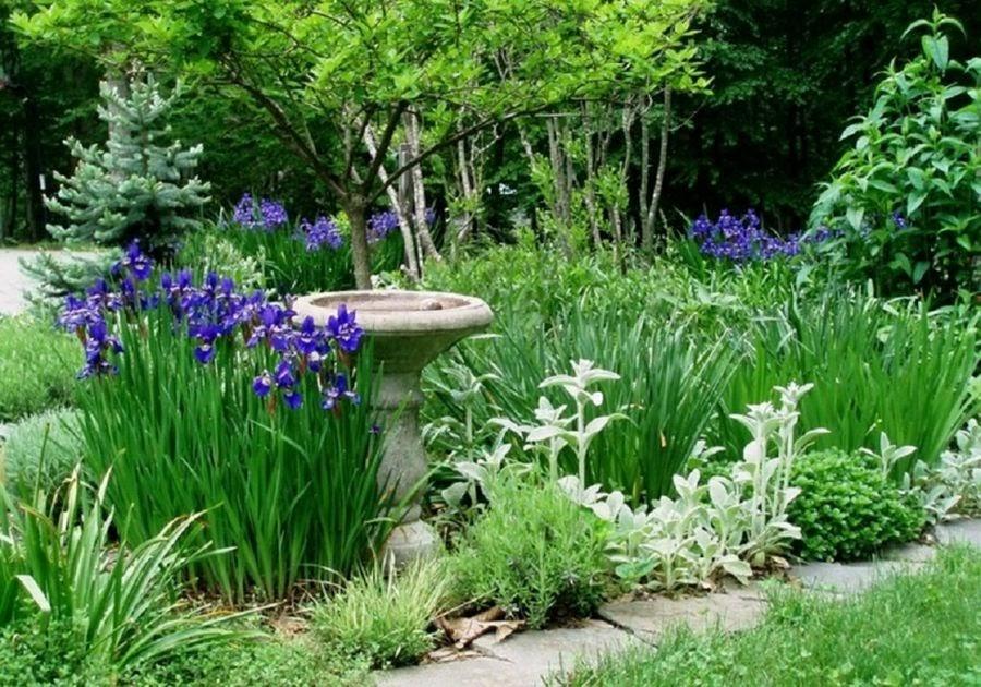 Estilos para jardines y espacios exteriores como decorar - Decoracion de jardines con plantas ...