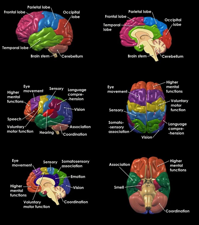 brainpainting brain computer interfaces 2