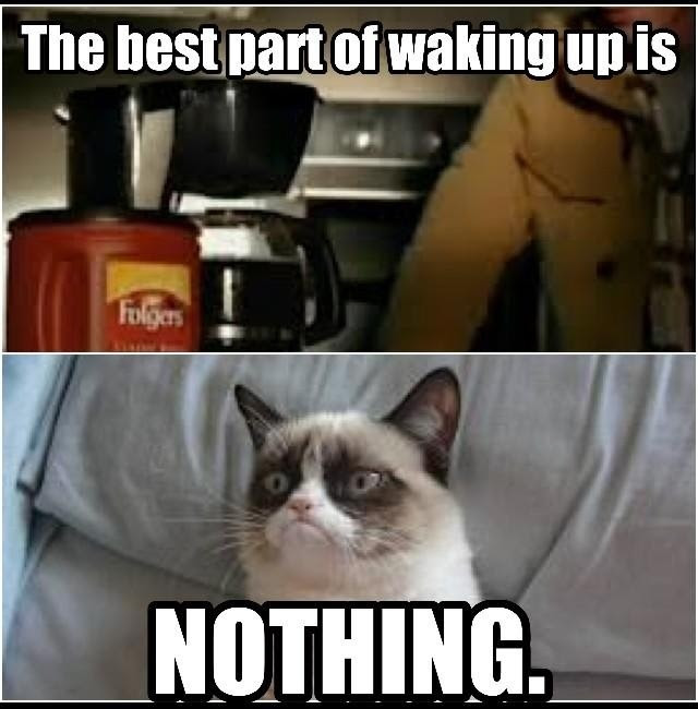 Oh Grumpy Cat how I love thee- and sleep... I love sleep, but I also love coffee... I bet most people can't look at this without singing the song in their head {evil grin}  #grumpycat #animals #meme