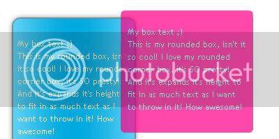 CSS Box