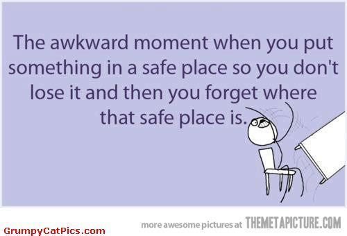 Find Out The Safe Place Where You Put Something Funny Cute Picture / Really Funny Meme Comics / Grumpy Cat Pictures