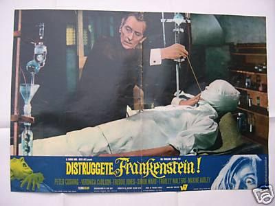 frankmustbedestroy_photobusta