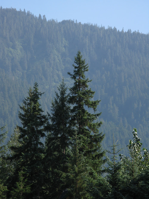 mountain ridge, Juneau, Alaska