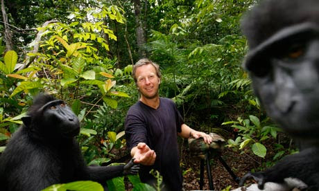 Monkey takes photo