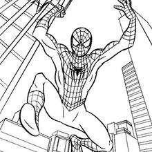 Dibujos Para Colorear Spiderman Con Su Tela De Araña Eshellokidscom