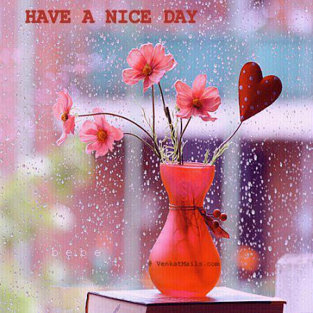 Good Morning Have A Nice Day Hd Picture Braderva Doceinfo
