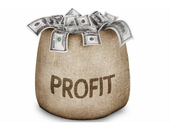 SEO Đỉnh giúp đem lại lợi nhuận dài lâu cho các khách hàng