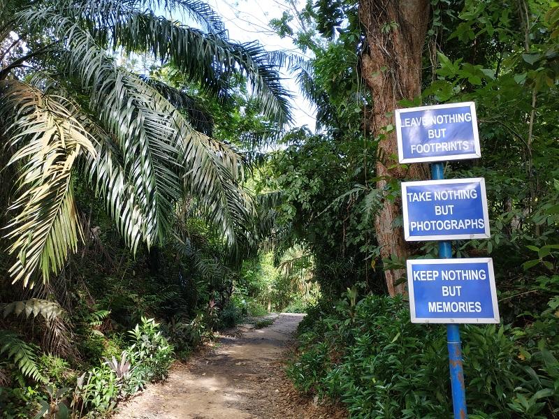 Hiking in KL, bukit gasing