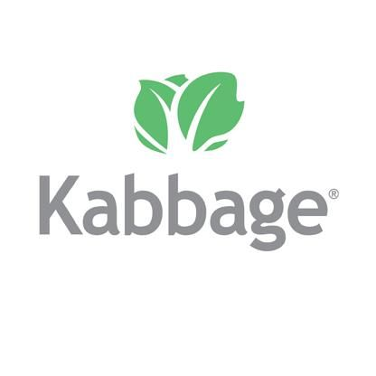 Image result for kabbage fintech