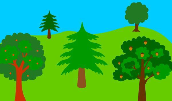 Resultado de imagem para dia internacional da floresta e das arvores