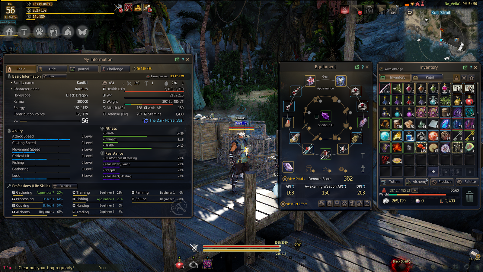 Black Desert Online: What to do When You Reach Level 56