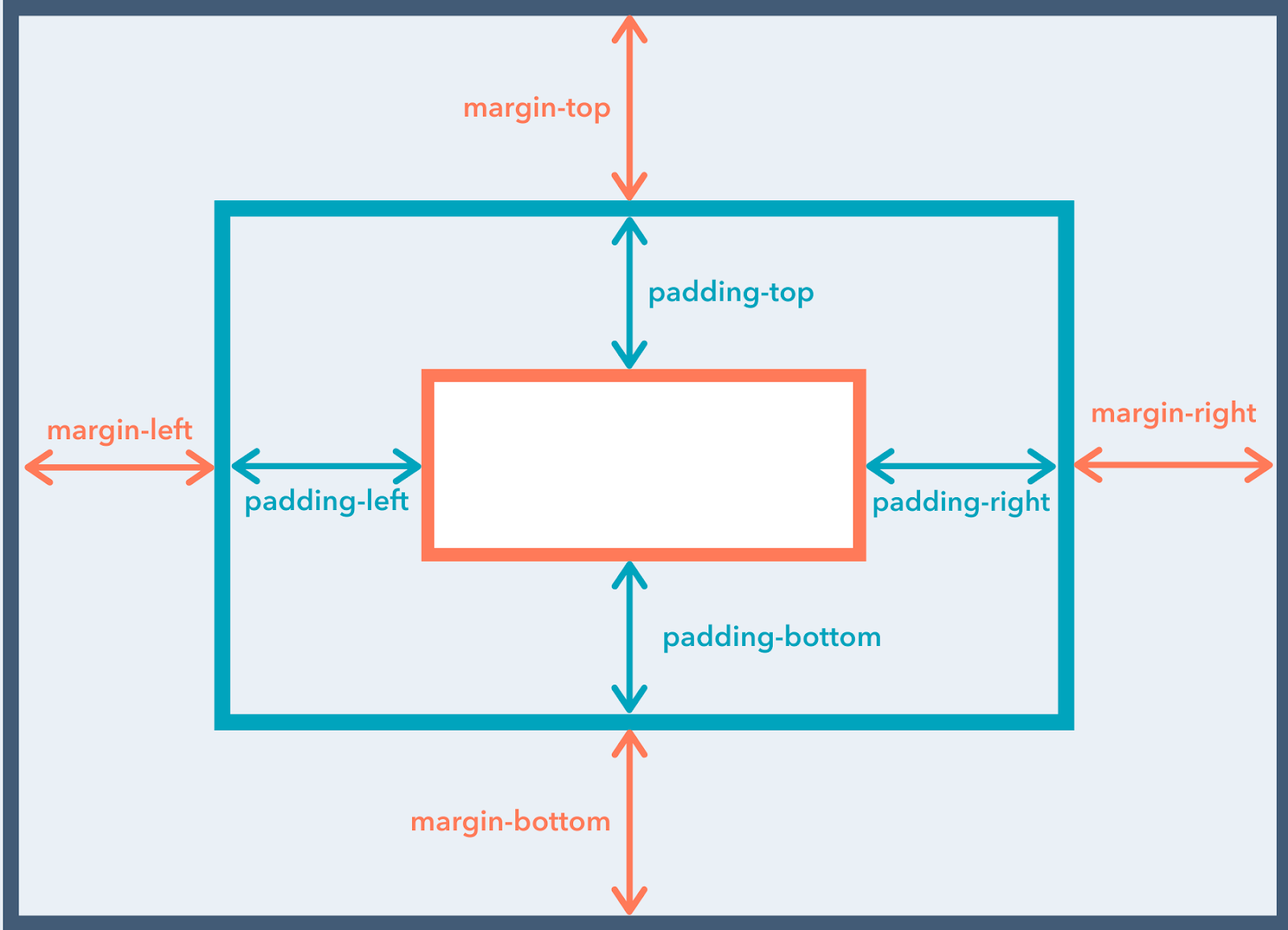 visual depiction of padding versus margin properties in CSS box model