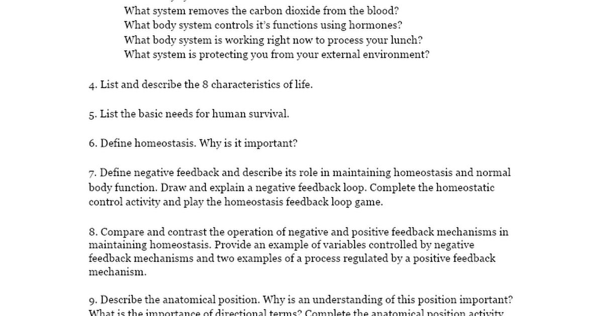 The Human Body: An Orientation Review - Google Docs