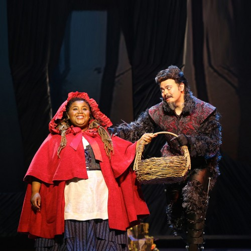 Image result for Ford's theater into the woods