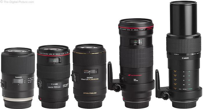 เลนส์มาโคร (Macro Lens)
