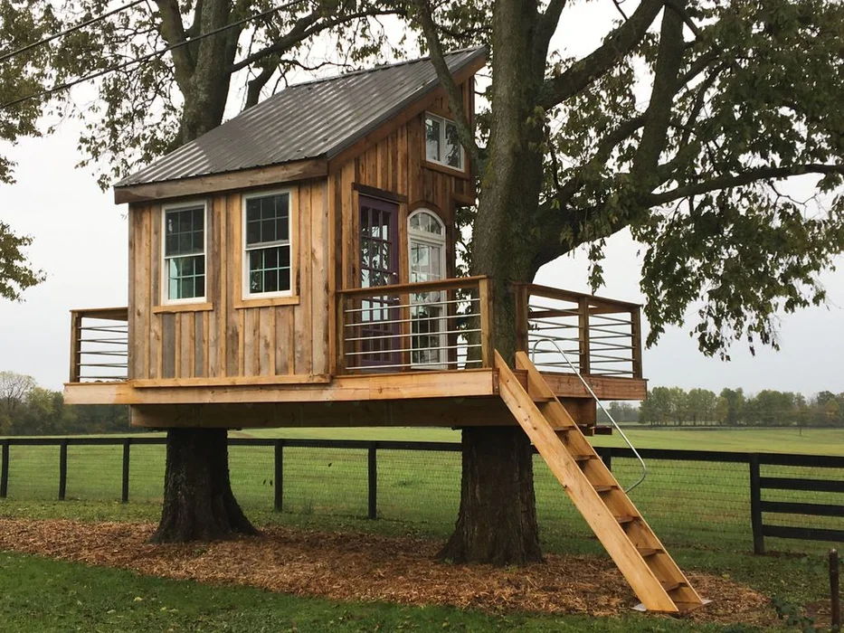 The Mega Treehouse on Farm