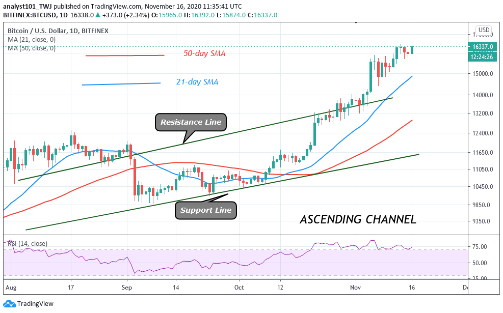 Technical Indicators Show Bitcoin Could Lose Momentum and Hit 14K 2