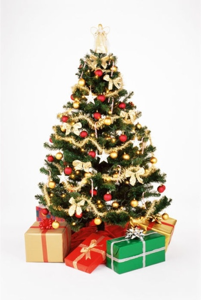 Image result for copyright christmas photos