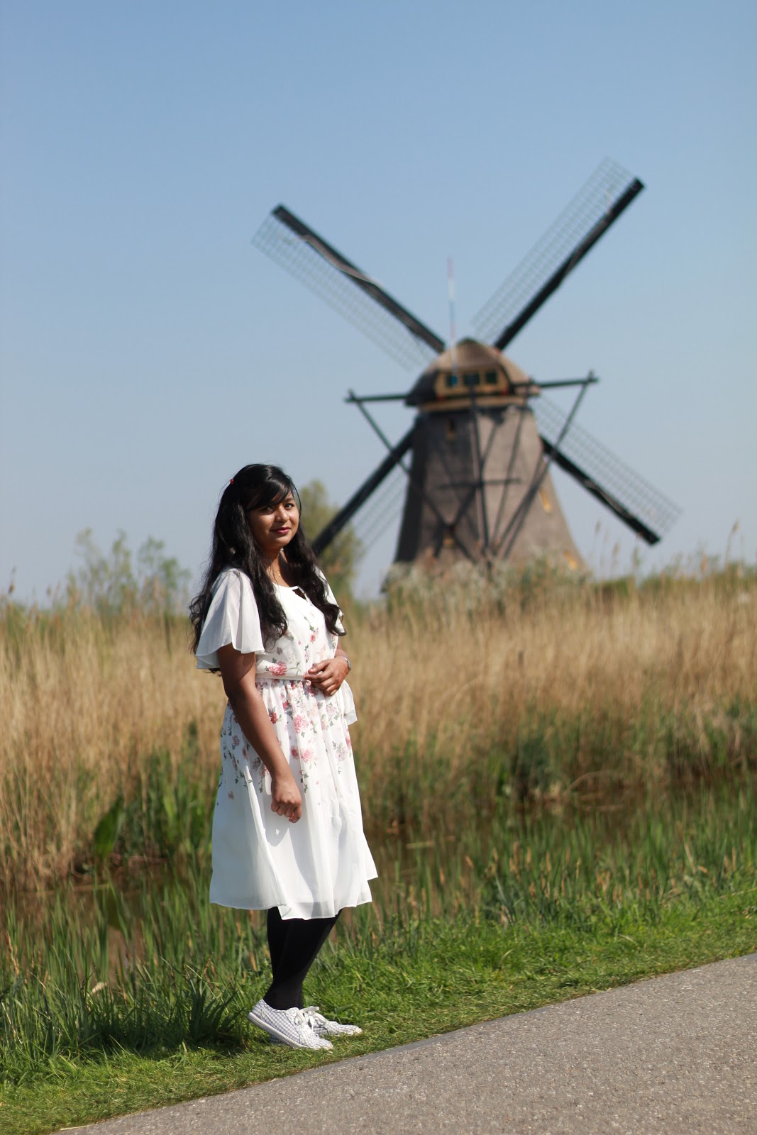 Windmills and nature are part of living in the Netherlands.