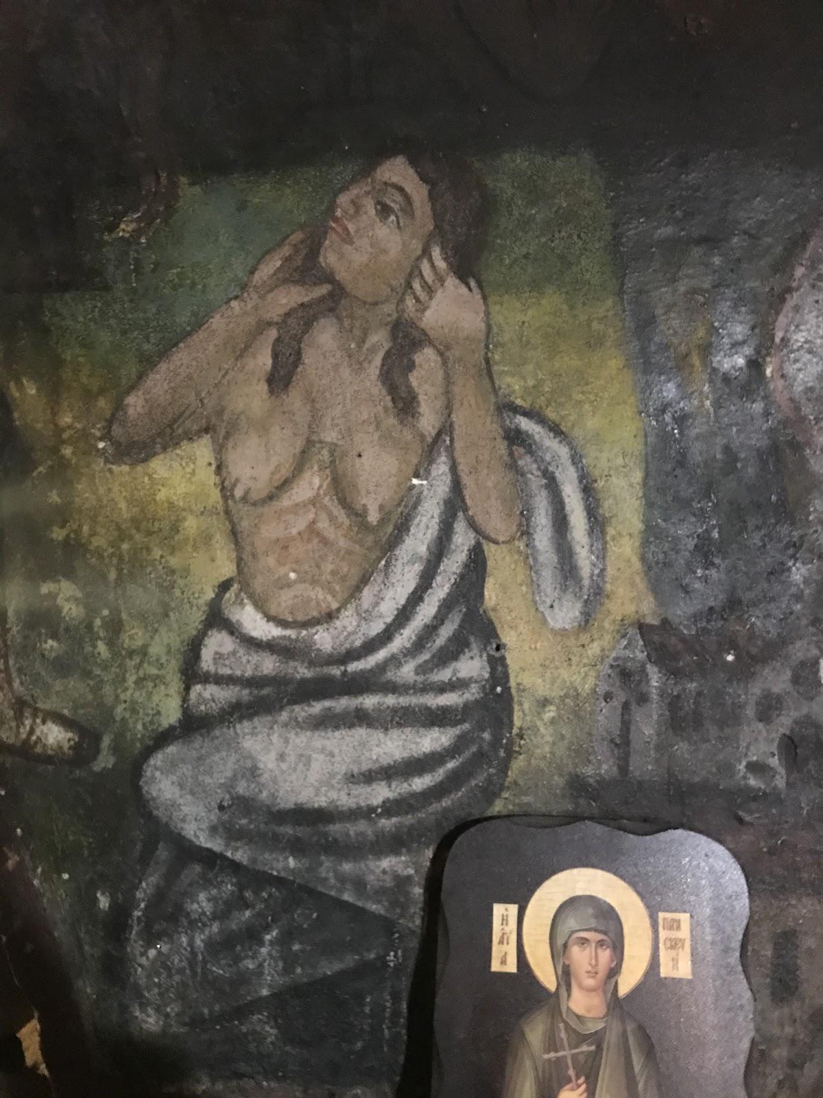 Златолист стенопис