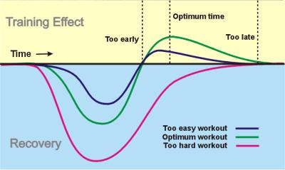 Training effect Cooper Jim Wendler