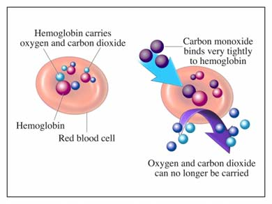Effect of Carbon Monoxide on human body and how it binds itself to hemoglobin to create oxygen deficiency